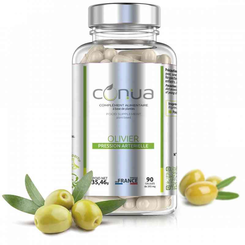 antioxidant olive tree