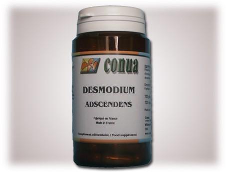 Desmodium adscendens
