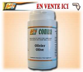 Olivier cholestérol diabète
