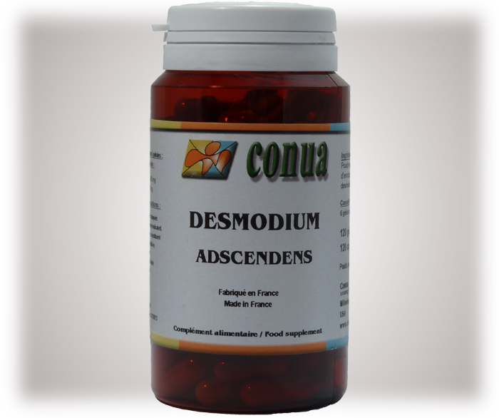 Buy desmodium adscendens