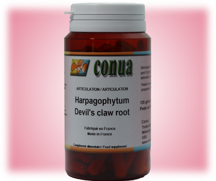 Buy Now harpagophytum 120 capsules