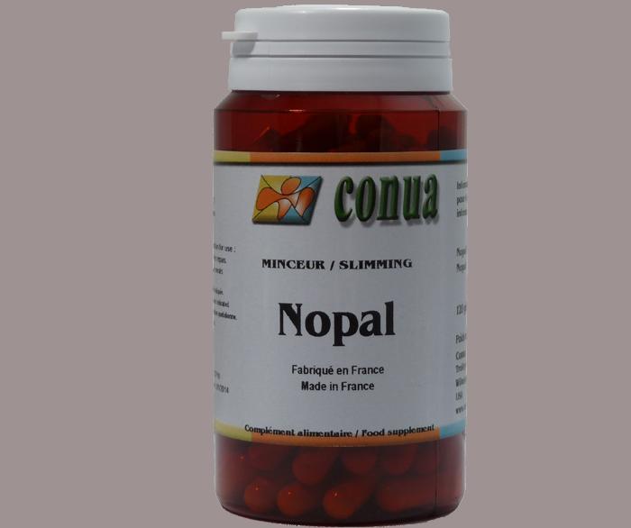 Buy nopal